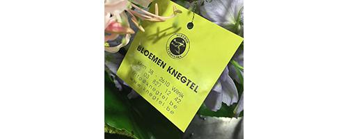 Bloemen Knegtel